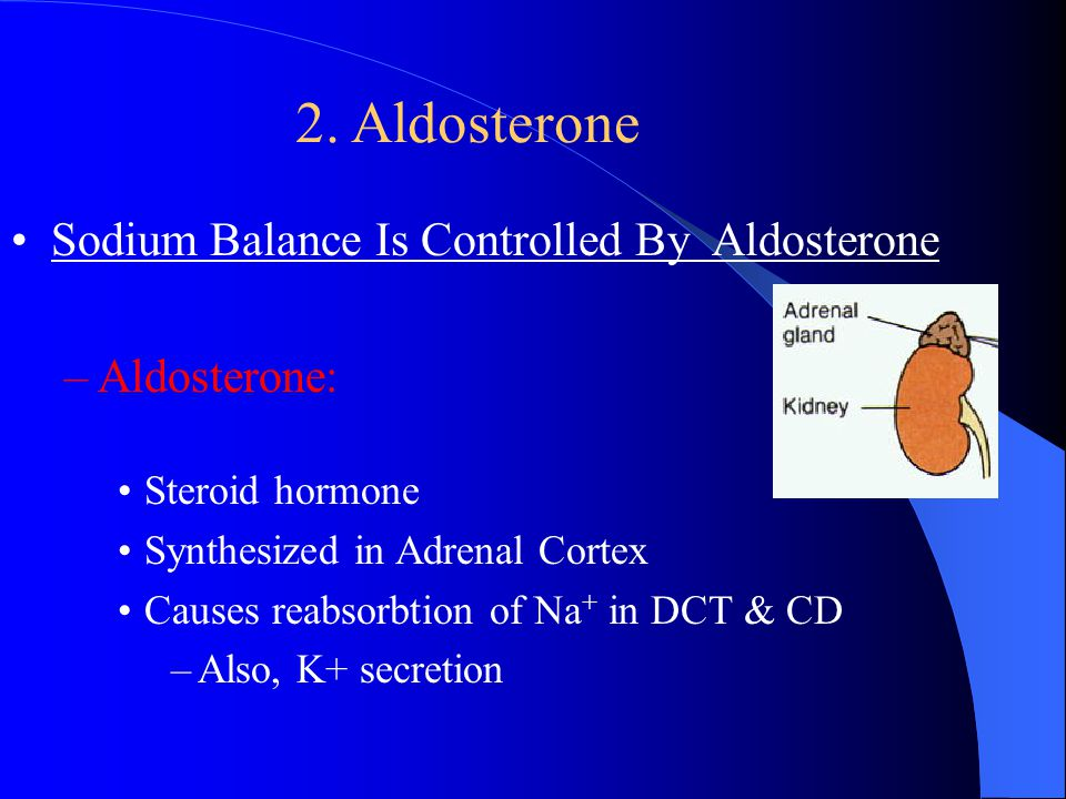 2. Aldosterone Sodium Balance Is Controlled By Aldosterone