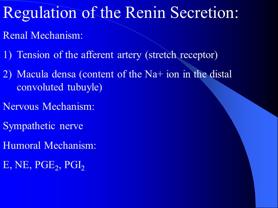 Regulation of the Renin Secretion: