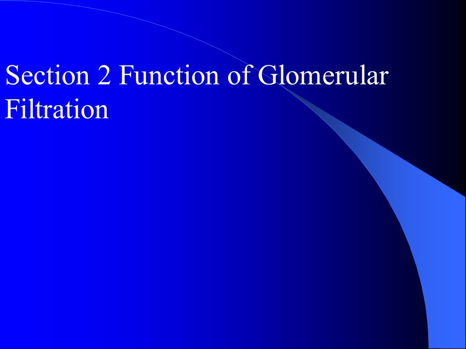 Section 2 Function of Glomerular Filtration