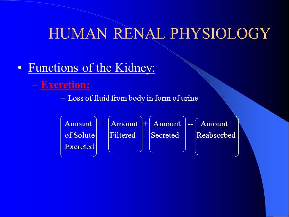 HUMAN RENAL PHYSIOLOGY