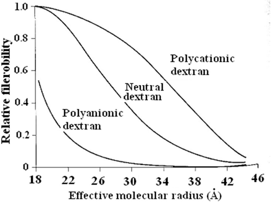 Dextran filterability