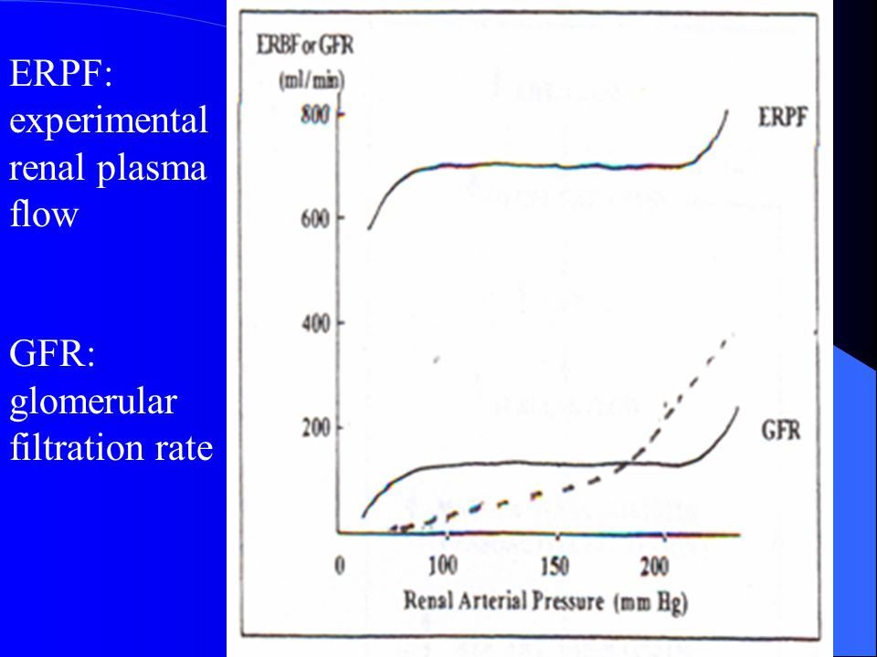 ERPF: experimental renal plasma flow