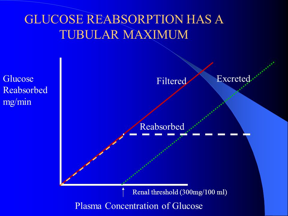 GLUCOSE REABSORPTION HAS A TUBULAR MAXIMUM