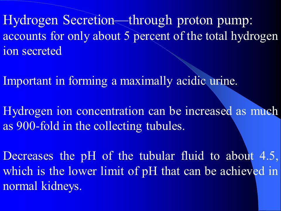 Hydrogen Secretion—through proton pump: