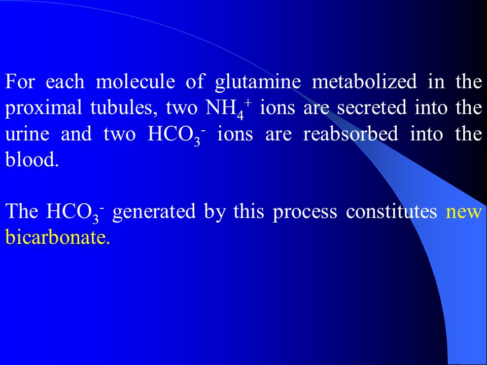 For each molecule of glutamine metabolized in the proximal tubules, two NH4+ ions are secreted into the urine and two HCO3- ions are reabsorbed into the blood.