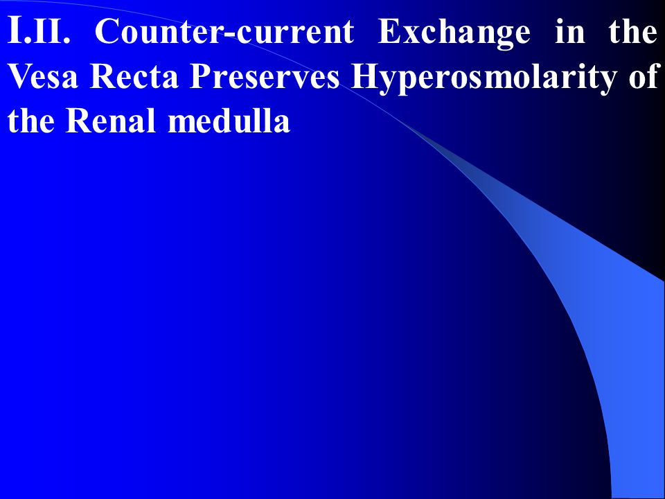 I.II. Counter-current Exchange in the Vesa Recta Preserves Hyperosmolarity of the Renal medulla