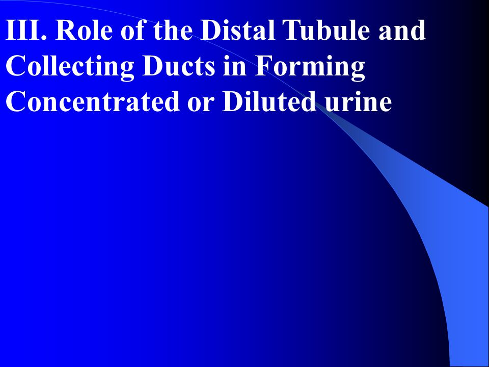 III. Role of the Distal Tubule and Collecting Ducts in Forming Concentrated or Diluted urine