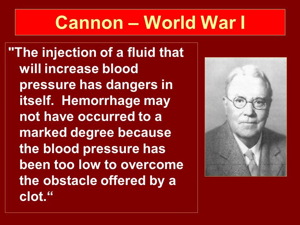 Cannon – World War I