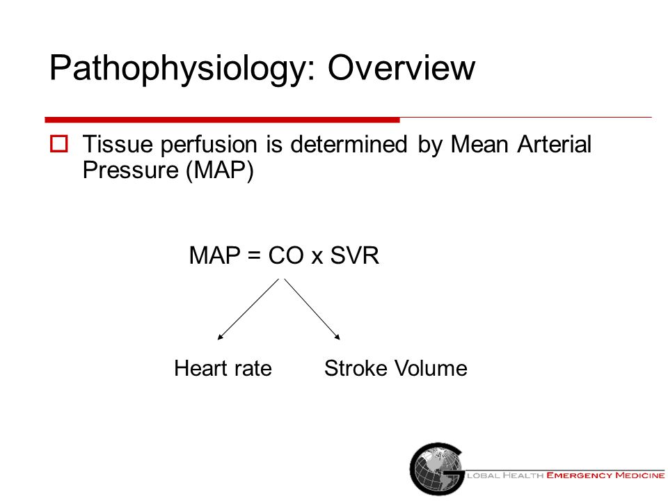 Pathophysiology: Overview