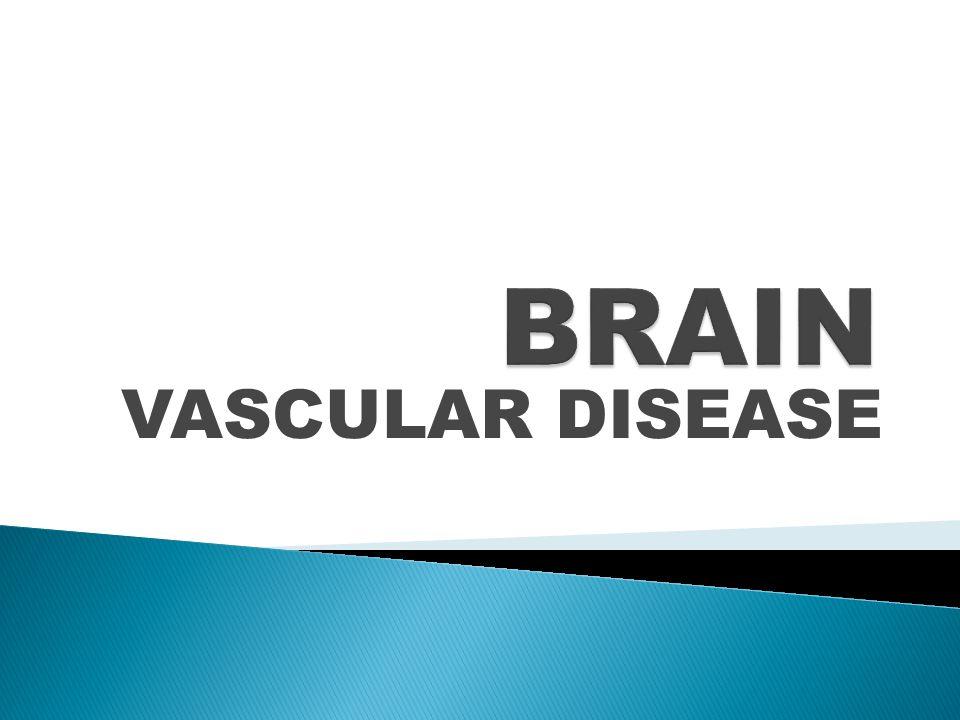 BRAIN VASCULAR DISEASE