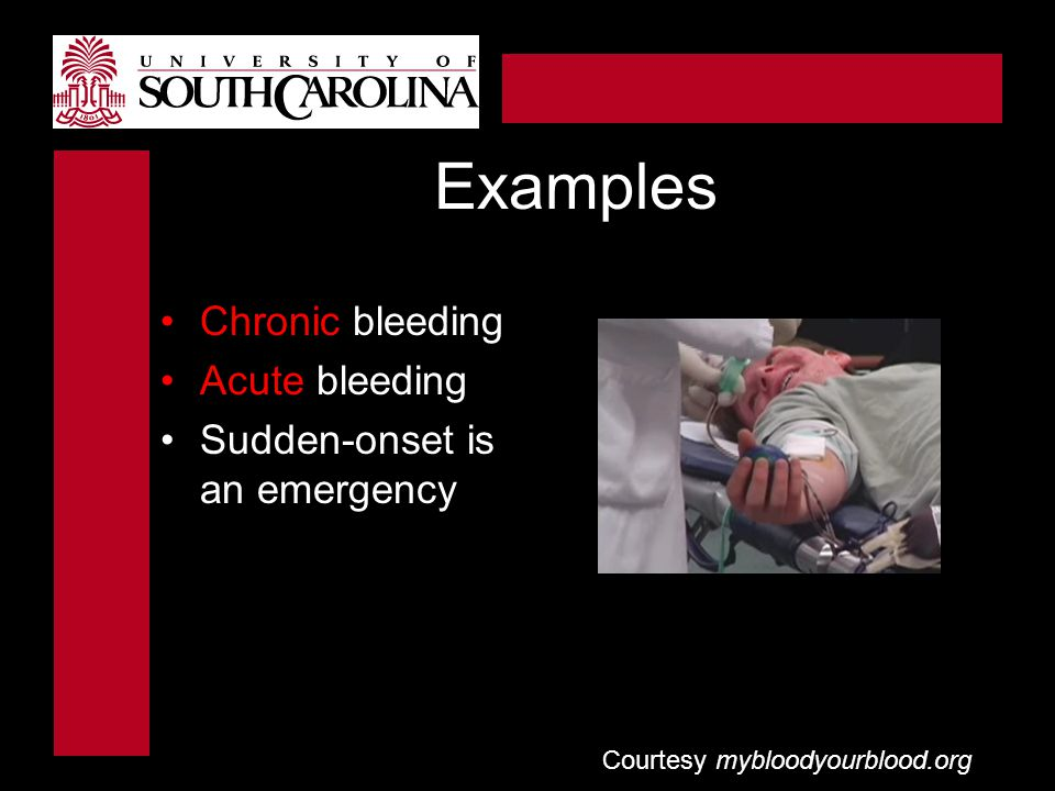 Courtesy mybloodyourblood.org