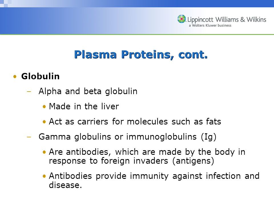 Plasma Proteins, cont. Globulin Alpha and beta globulin