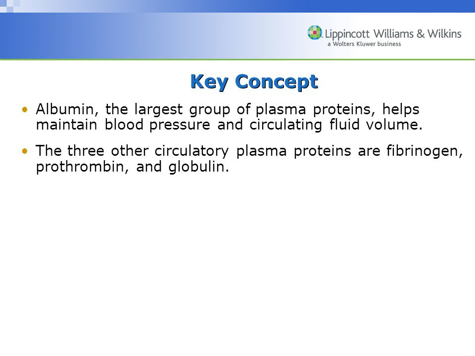 Key Concept Albumin, the largest group of plasma proteins, helps maintain blood pressure and circulating fluid volume.