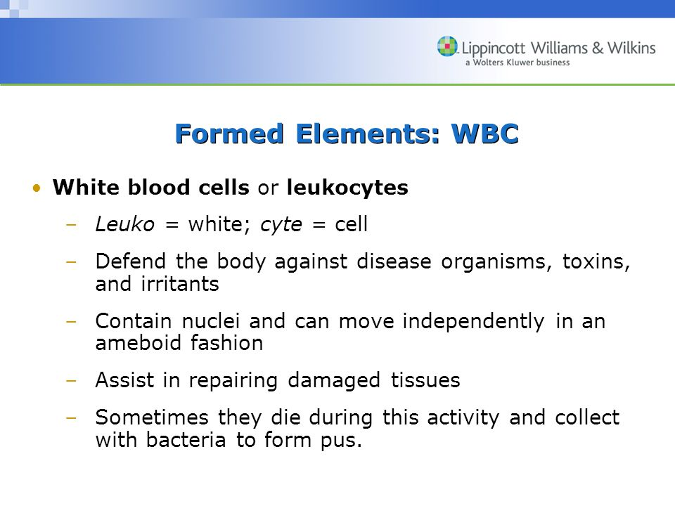 Formed Elements: WBC White blood cells or leukocytes