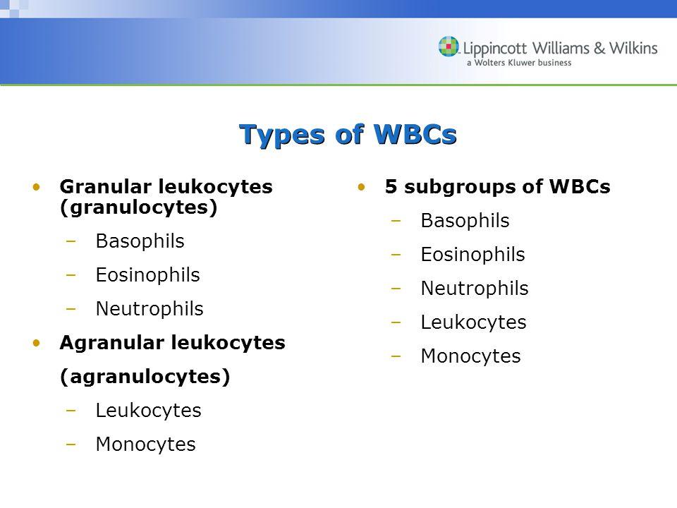 Types of WBCs Granular leukocytes (granulocytes) Basophils Eosinophils