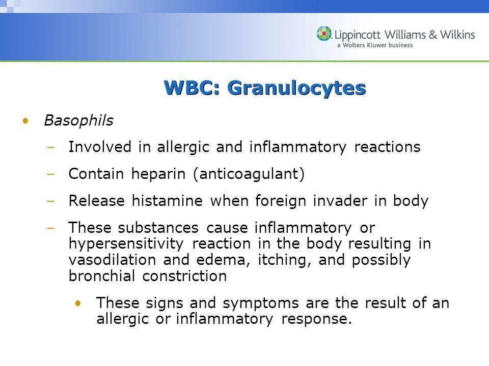WBC: Granulocytes Basophils