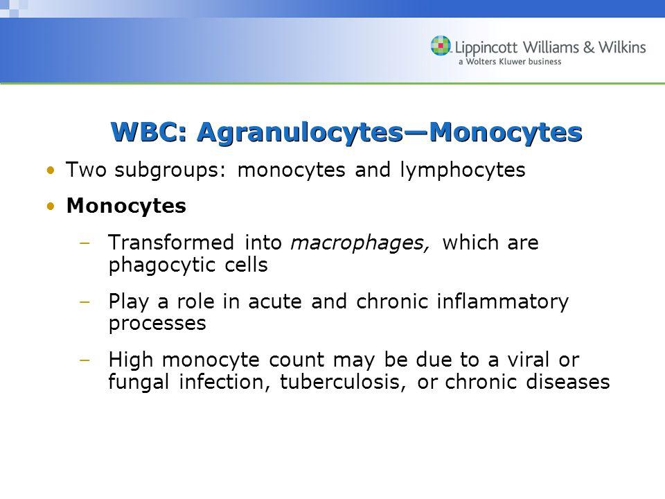 WBC: Agranulocytes—Monocytes