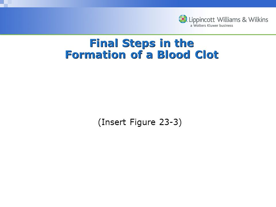 Final Steps in the Formation of a Blood Clot