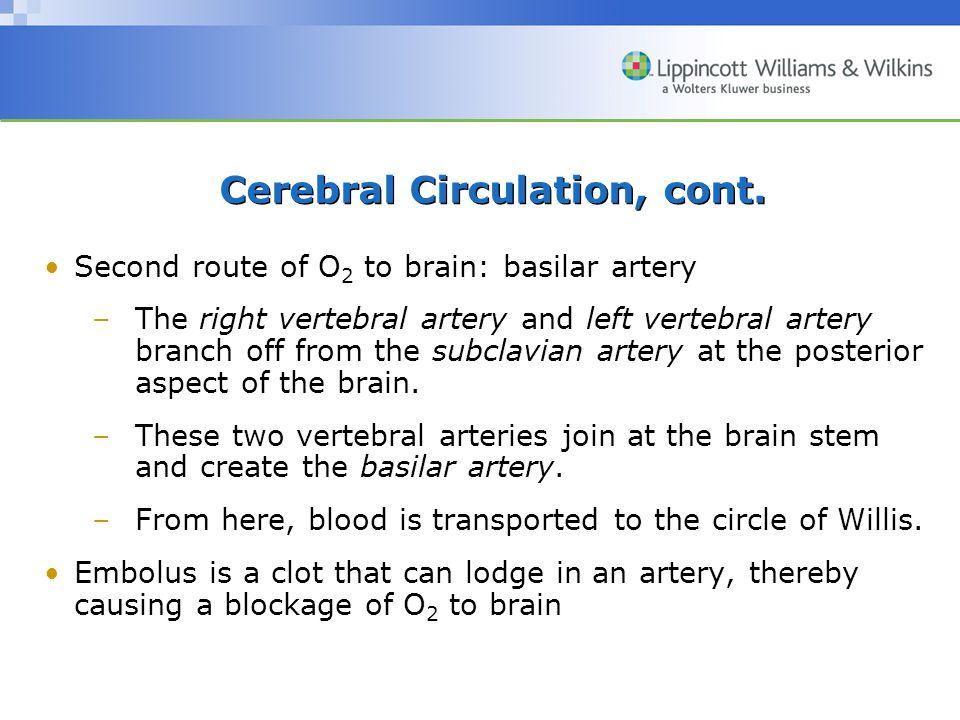 Cerebral Circulation, cont.