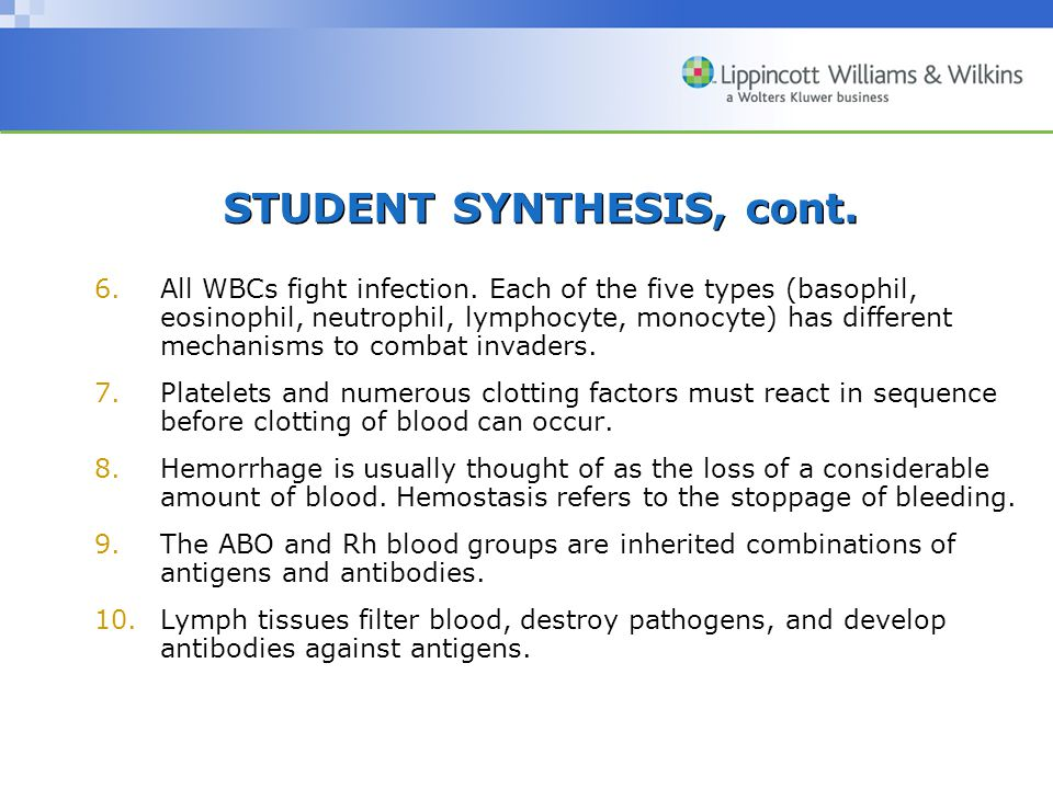 STUDENT SYNTHESIS, cont.