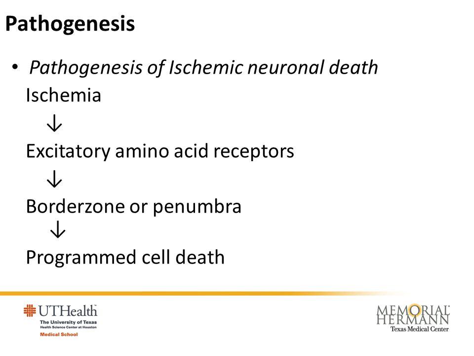 Pathogenesis Pathogenesis of Ischemic neuronal death Ischemia ↓