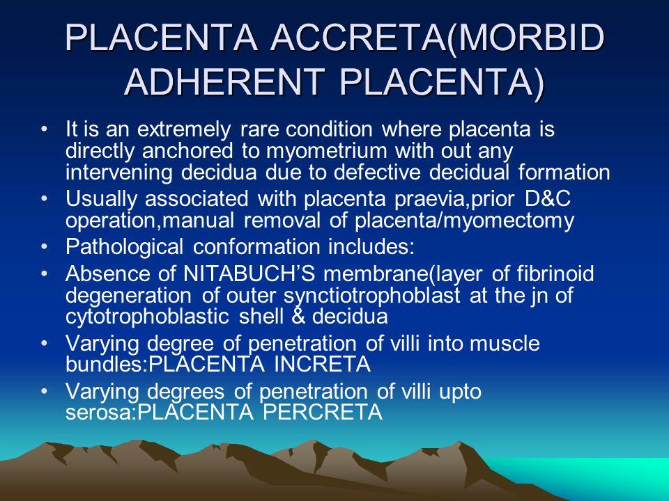 PLACENTA ACCRETA(MORBID ADHERENT PLACENTA)
