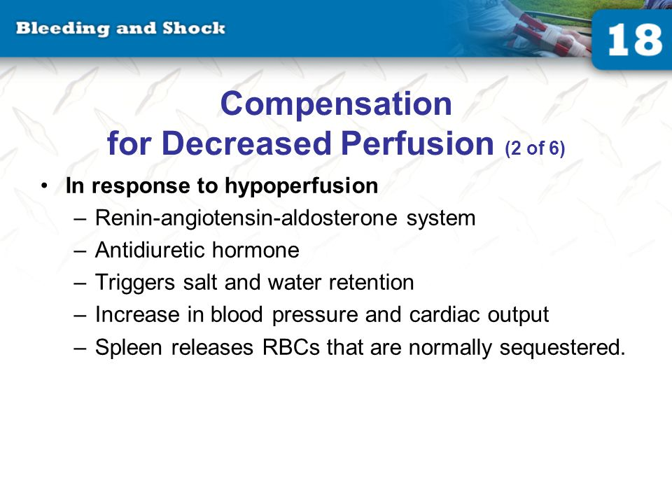 Compensation for Decreased Perfusion (3 of 6)