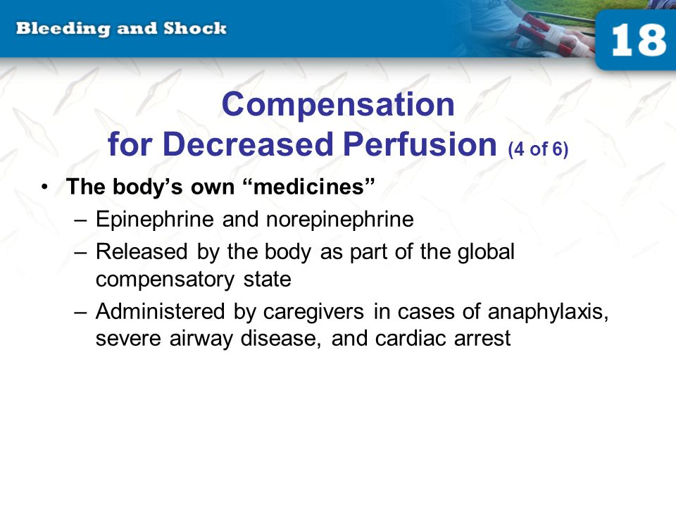 Compensation for Decreased Perfusion (5 of 6)