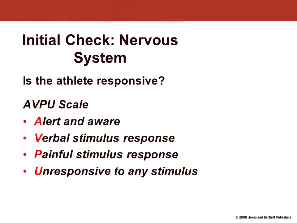 Initial Check: Nervous System