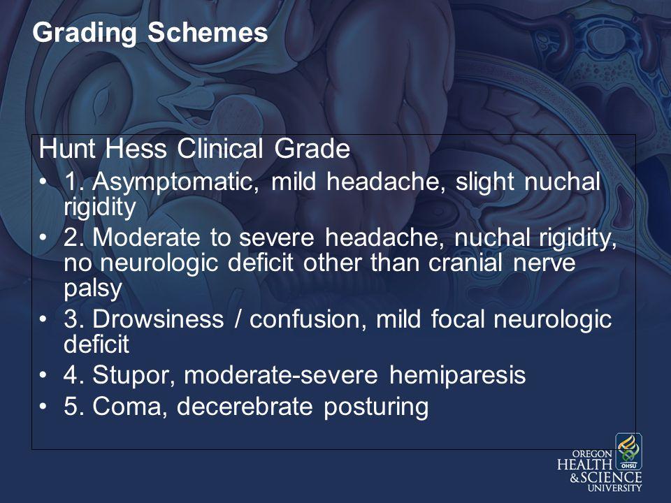 Hunt Hess Clinical Grade