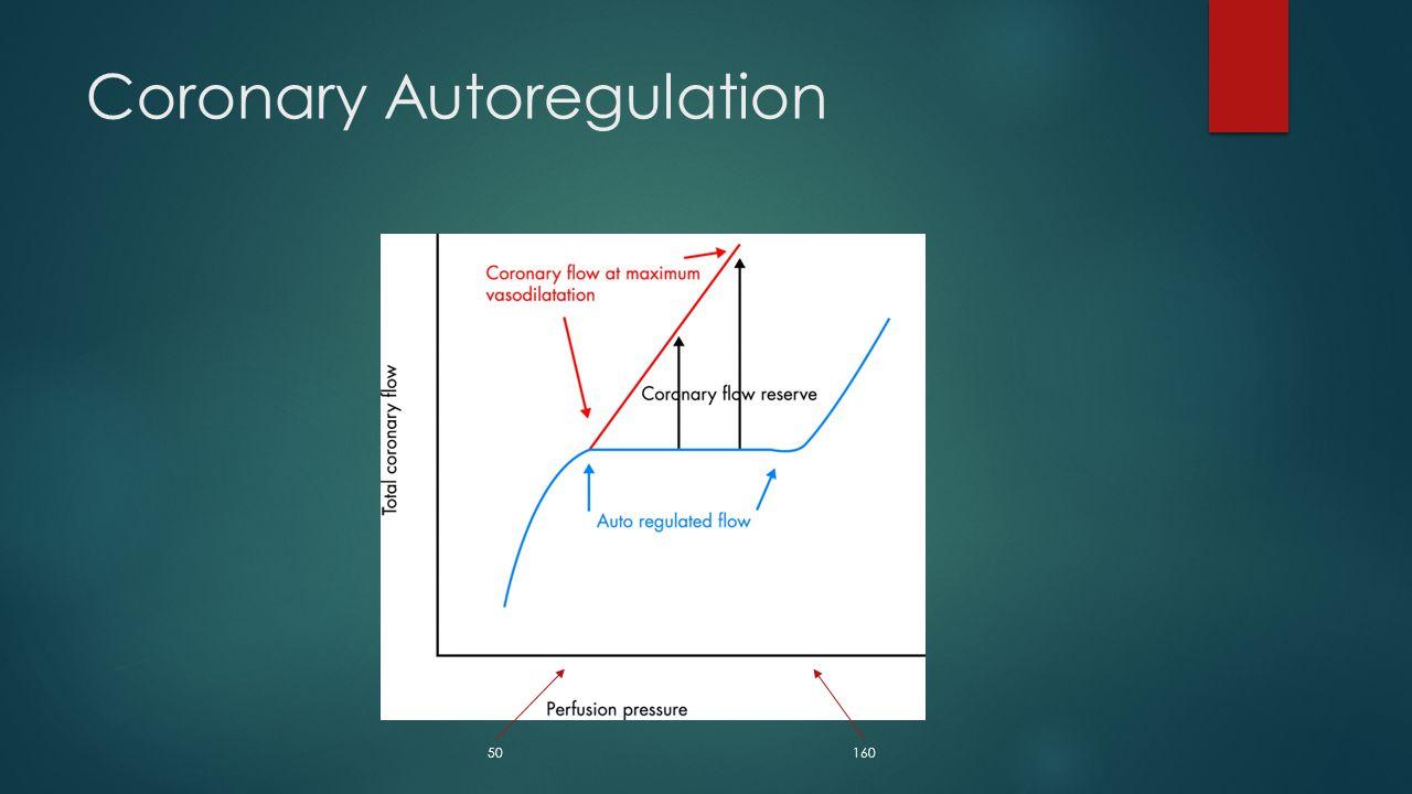 Coronary Autoregulation
