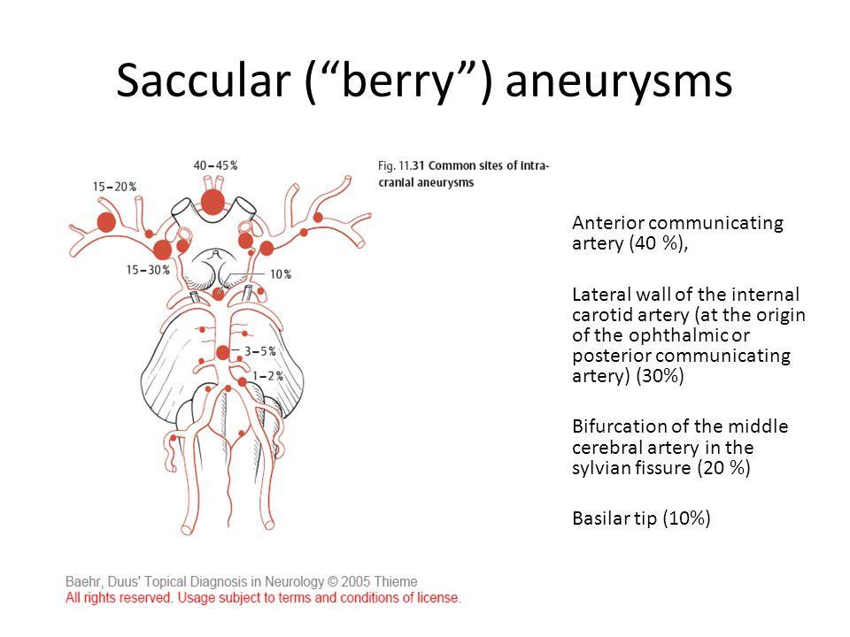 Saccular ( berry ) aneurysms