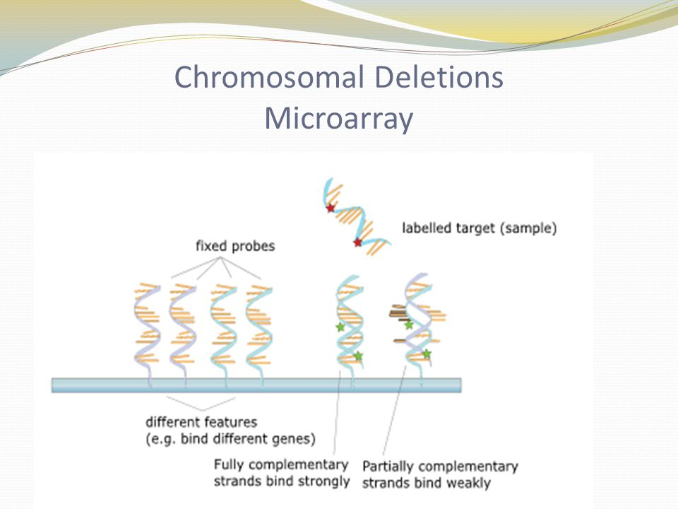 Chromosomal Deletions Microarray
