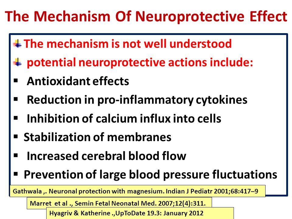 The Mechanism Of Neuroprotective Effect