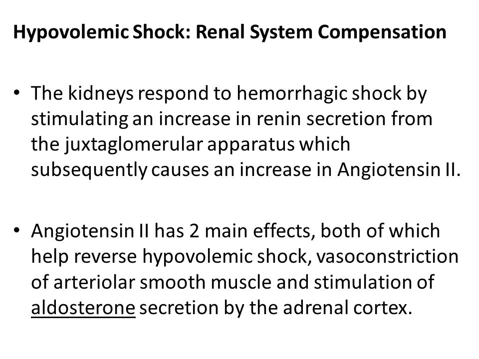 Hypovolemic Shock: Renal System Compensation