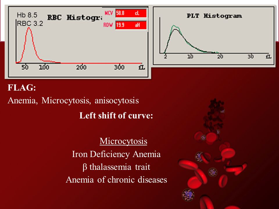 Anemia, Microcytosis, anisocytosis