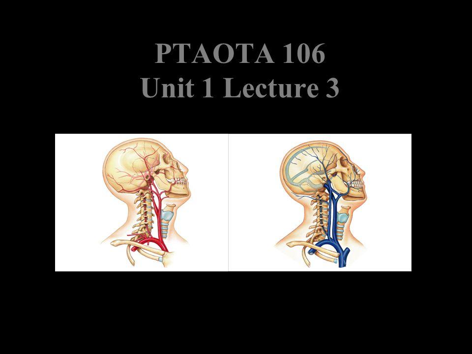 PTAOTA 106 Unit 1 Lecture 3