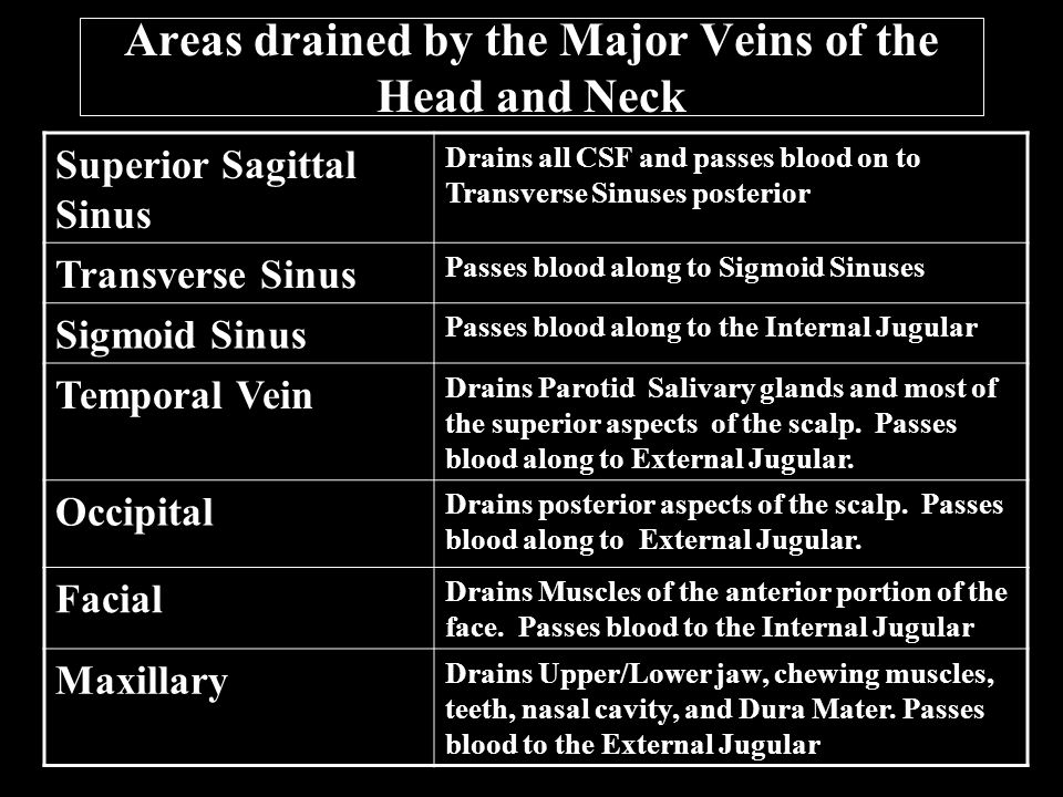 Areas drained by the Major Veins of the Head and Neck