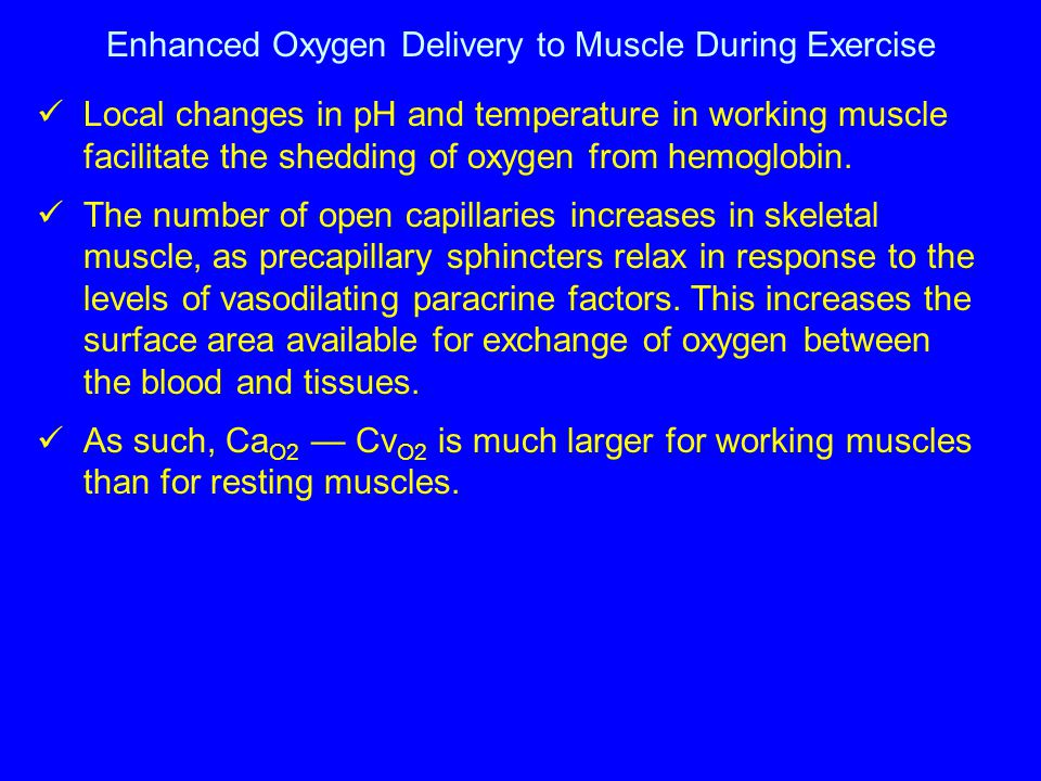 Enhanced Oxygen Delivery to Muscle During Exercise