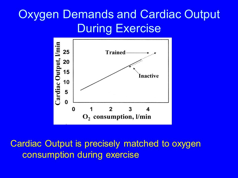 Oxygen Demands and Cardiac Output During Exercise