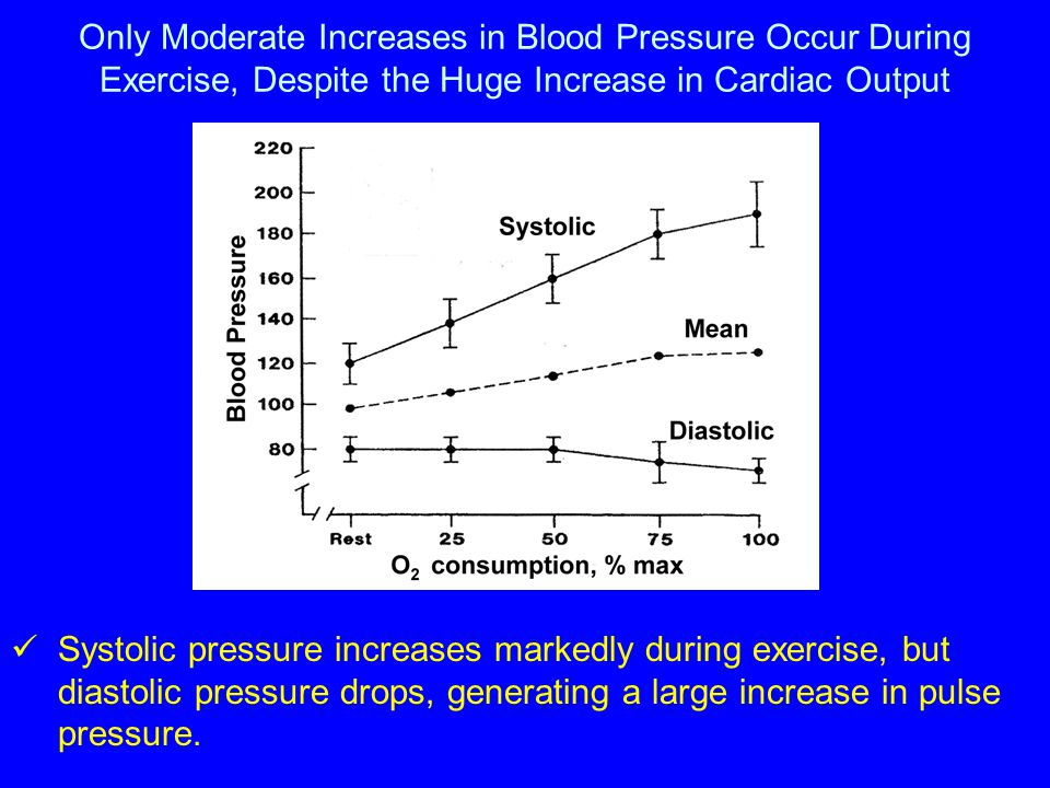 Only Moderate Increases in Blood Pressure Occur During Exercise, Despite the Huge Increase in Cardiac Output