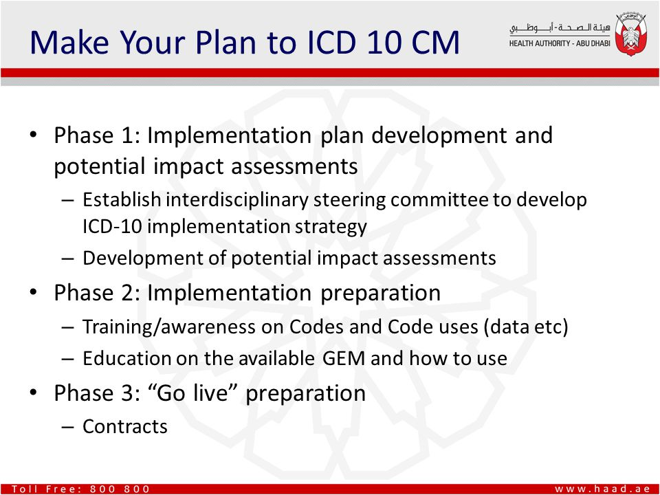 Make Your Plan to ICD 10 CM Phase 1: Implementation plan development and potential impact assessments.