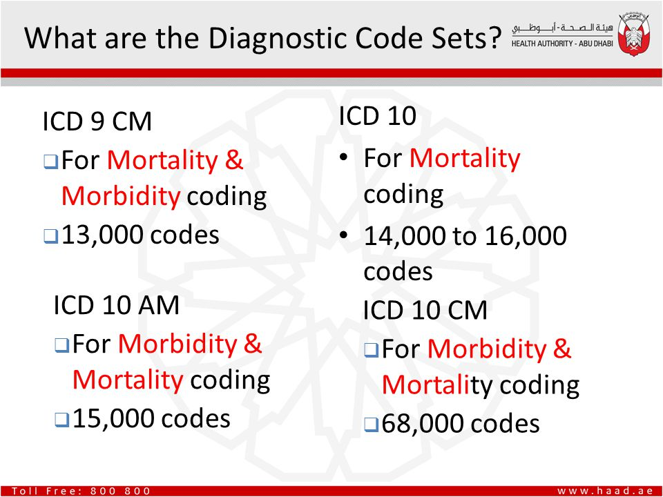 update to icd 10 cm diagnostic code set - ppt download, Muscles