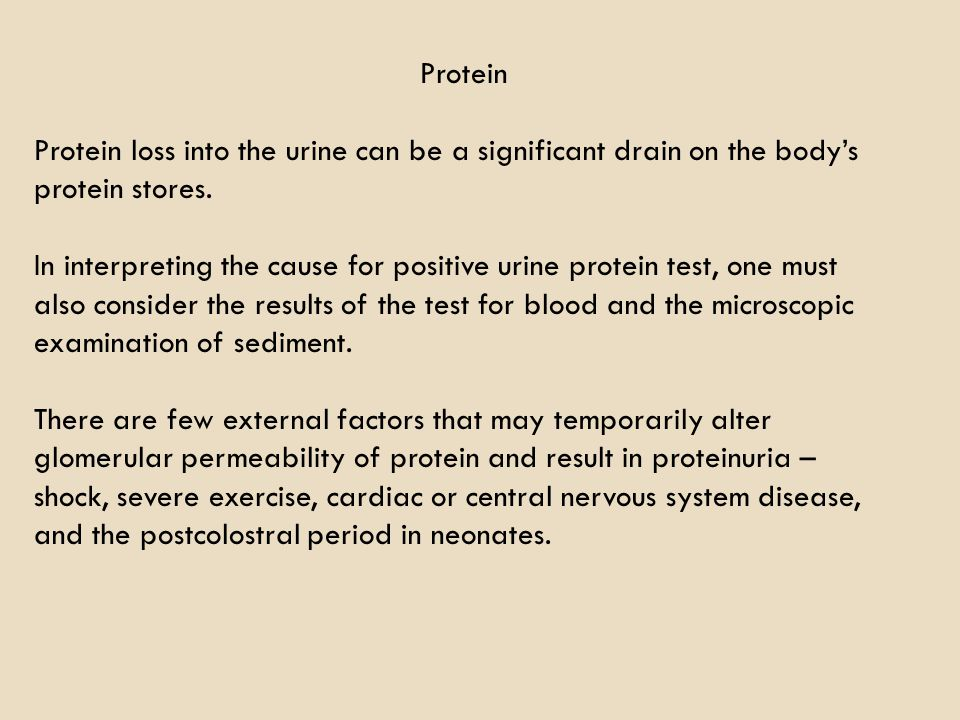 Protein Protein loss into the urine can be a significant drain on the body's protein stores.