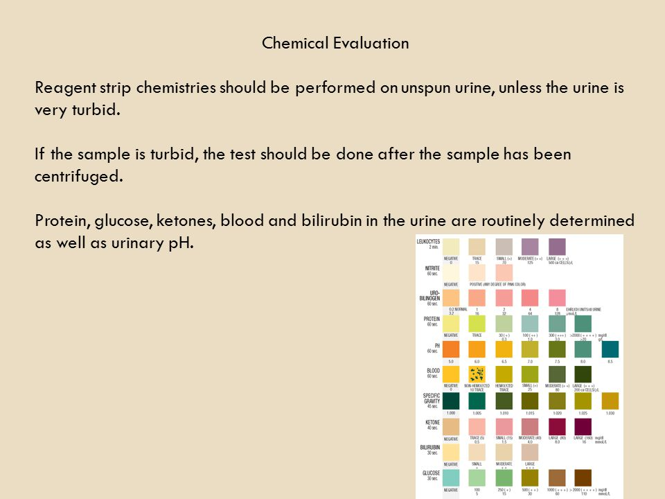 Chemical Evaluation Reagent strip chemistries should be performed on unspun urine, unless the urine is very turbid.
