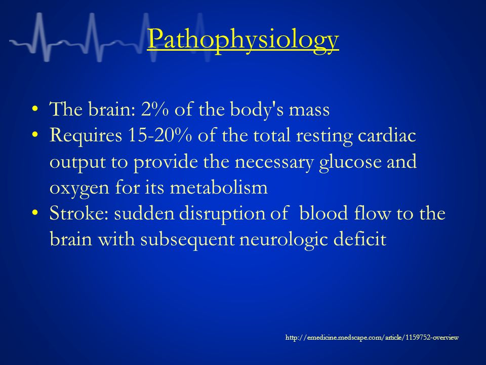 Pathophysiology The brain: 2% of the body s mass