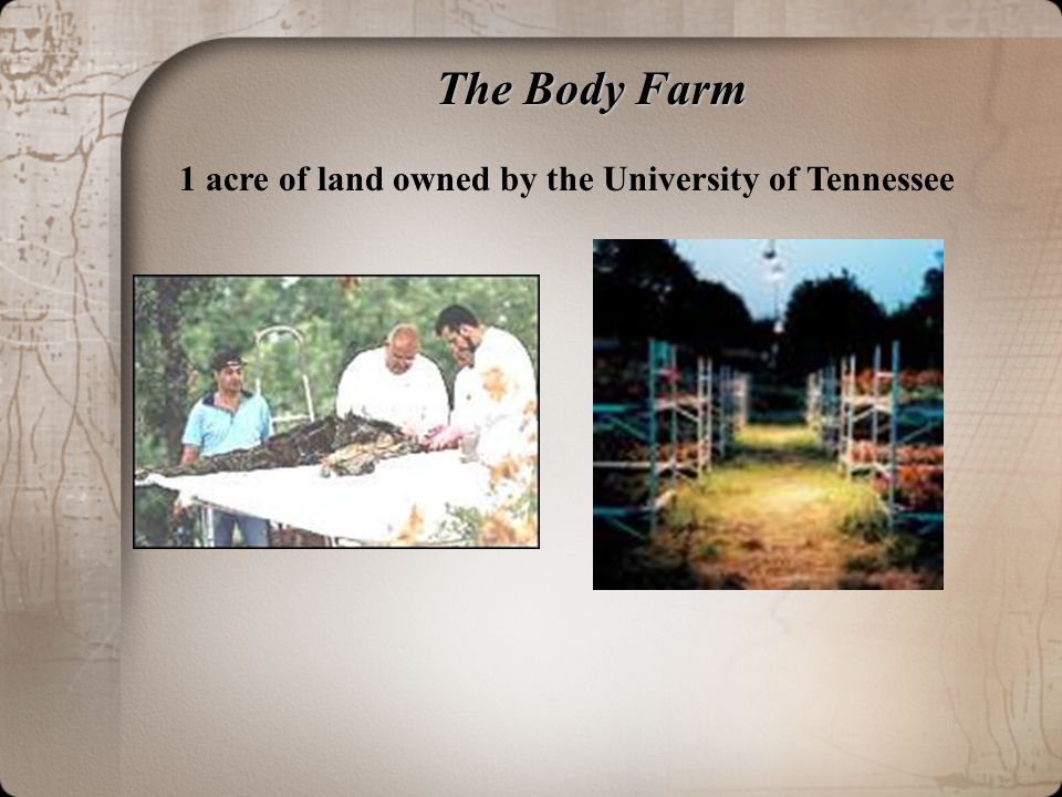 The Body Farm 1 acre of land owned by the University of Tennessee