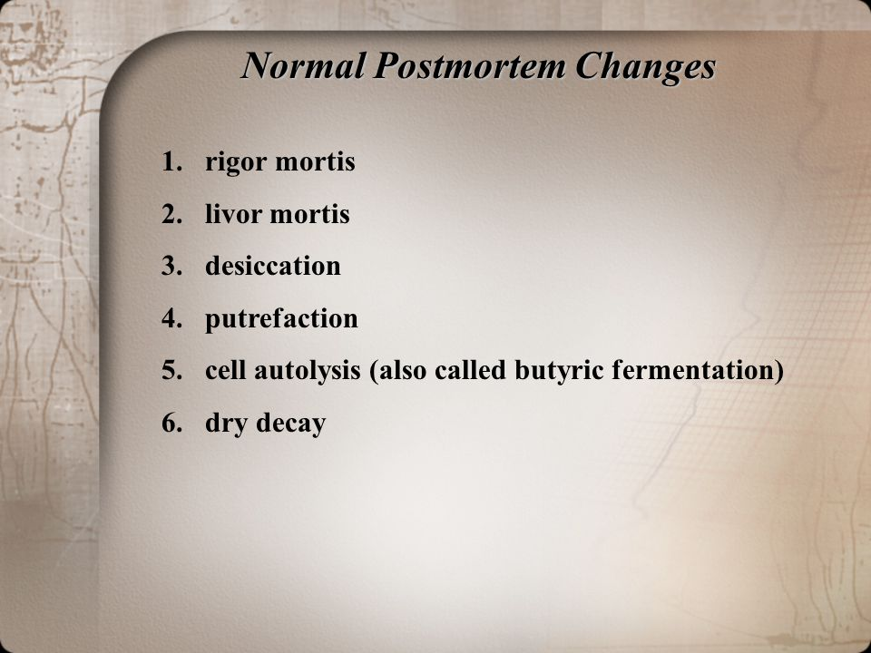 Normal Postmortem Changes