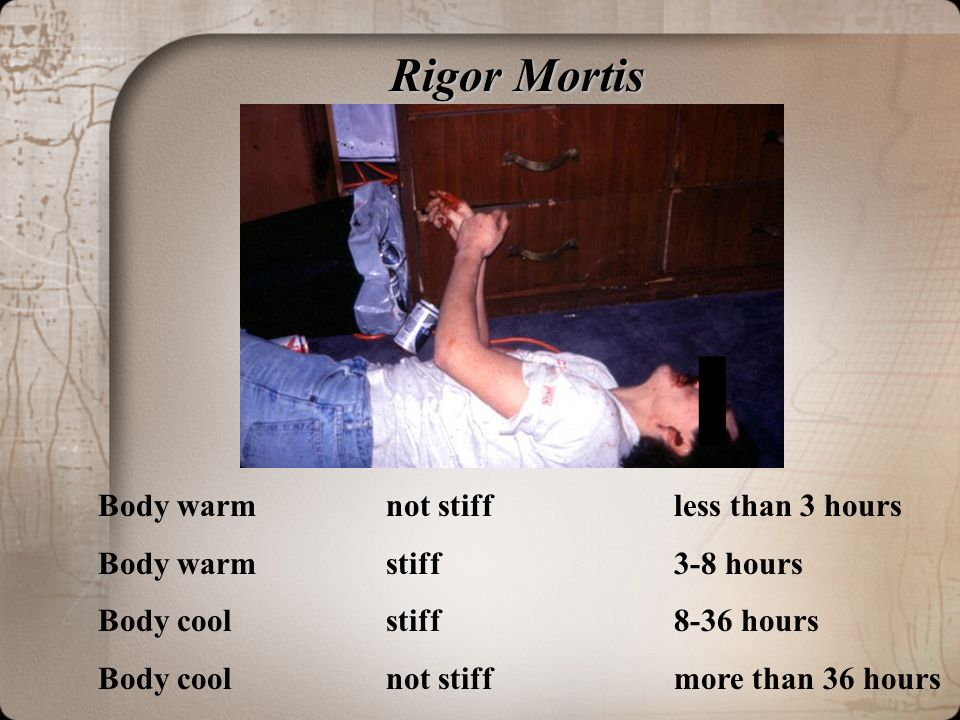 Rigor Mortis Body warm not stiff less than 3 hours