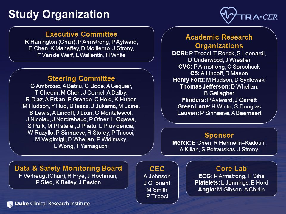 Study Organization Executive Committee Academic Research Organizations